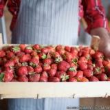 delivery frutas valores Brooklin Novo