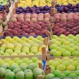 distribuidora de hortifruti Pinheiros