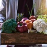 empresa de delivery de legumes e verduras Jardins