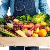 empresa de delivery para frutas e legumes Fazenda Morumbi
