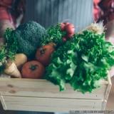 empresa de frutas e legumes delivery Chácara Itaim
