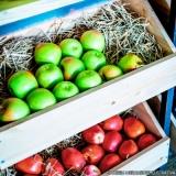 produtos para hortifruti orçamento Vila Clementino